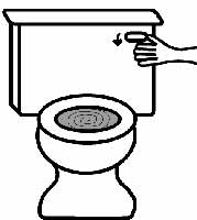 Toilet Flush - Sound effect | Download free sound effects ...